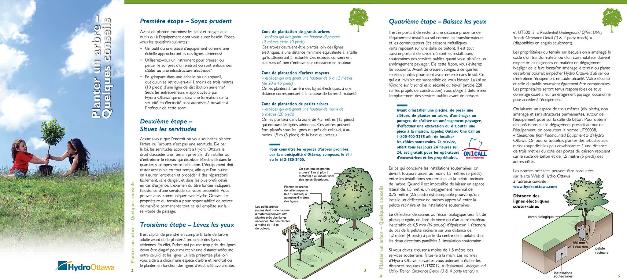 Conseils sur la plantation d'arbres
