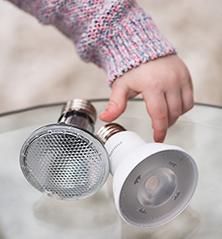 Bulb Shape and Base