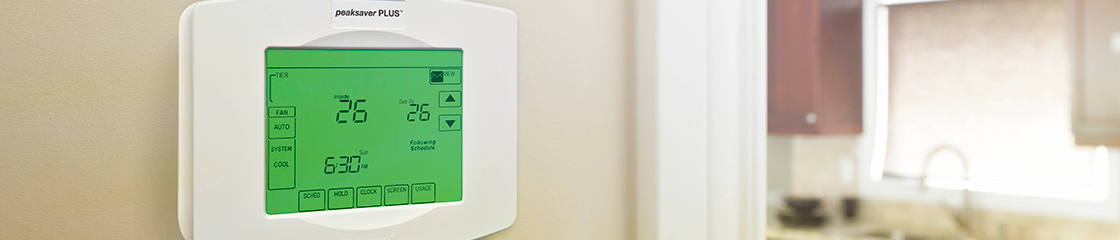 The free thermostat and energy display offer is now closed.