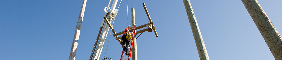 A powerline technician apprentice climbing a pole during a training exercise