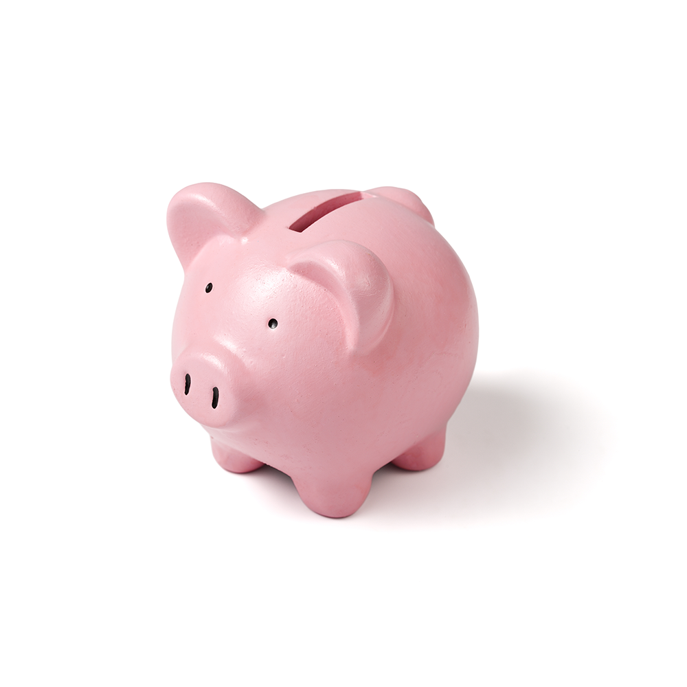 Low Income Assistance Piggy Bank