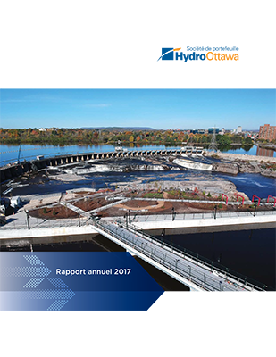 Annual Report 2017 Cover Image